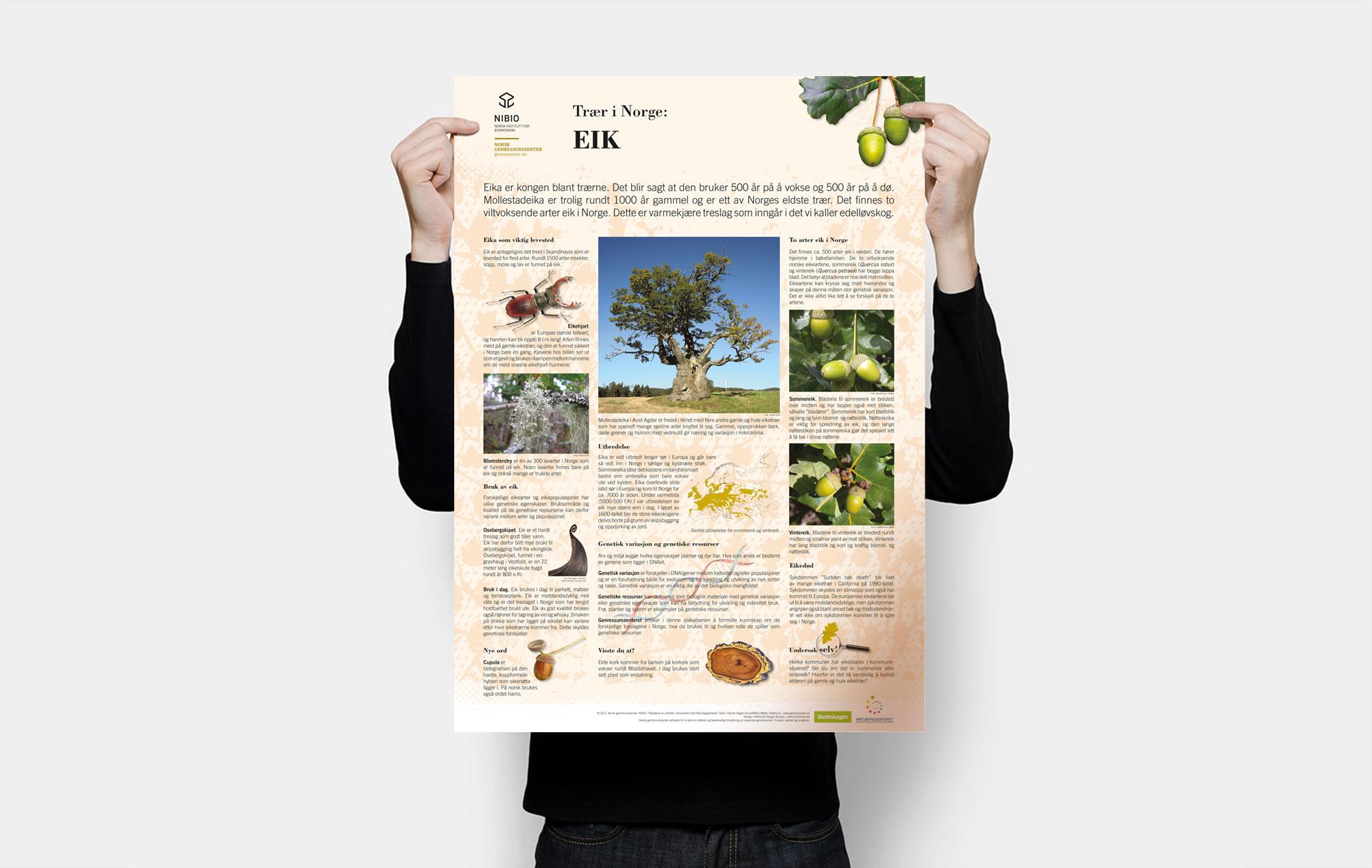 nibio trees presentation